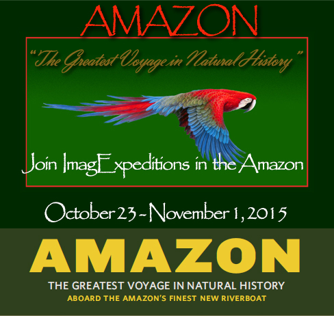 Join us in the Amazon